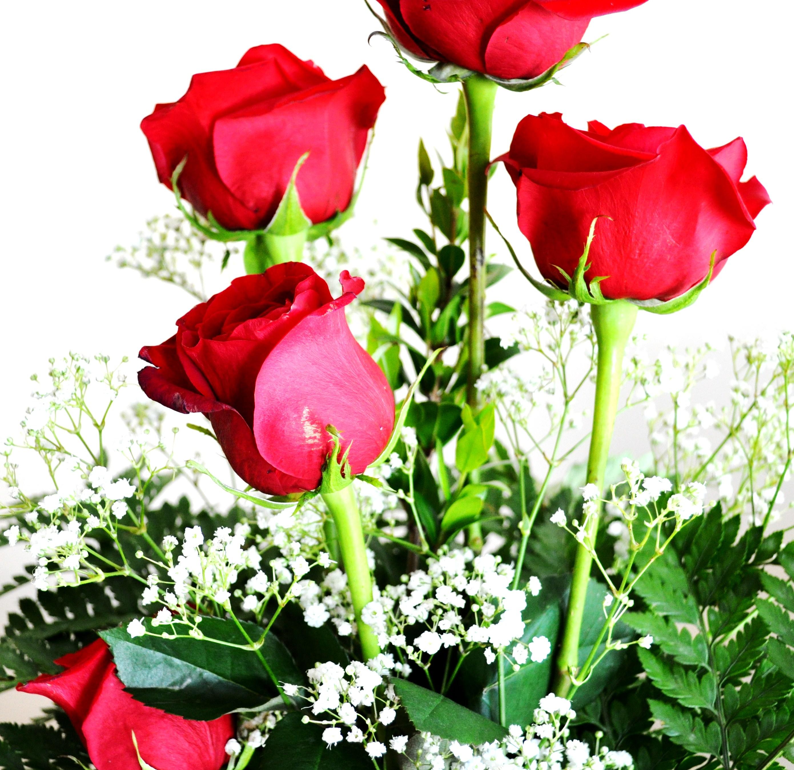 day sweet my dear
